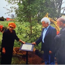 """L'omaggio a Beuys alla """"sua"""" quercia: così Lodi ricorda l'artista della natura"""