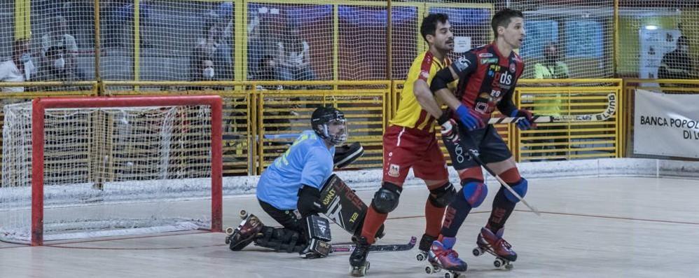 Hockey, Trissino e Bassano re del mercato con Cocco e Ambrosio