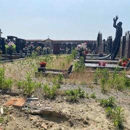 Il cimitero di Sant'Angelo invaso dalla vegetazione