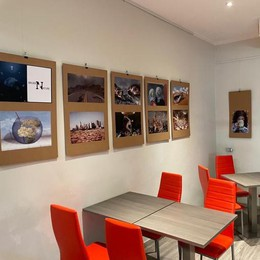 L'ambiente ferito: viaggio tra foto e realtà virtuale al bar Cavour