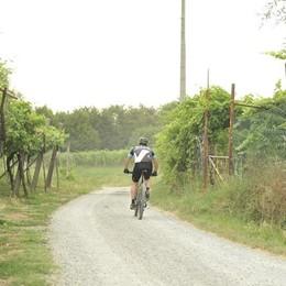 L'escursione in bicicletta sulla collina finisce in ospedale