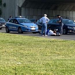 LODI Un motociclista finisce a terra alla rotonda della Coop