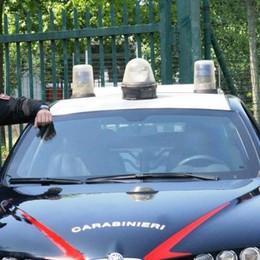 Sant'Angelo: una denuncia per furto, droga e quattro ubriachi al volante nella rete dei carabinieri