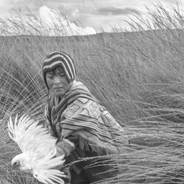 Una selezione eseguita su 756 fotografi:n ecco i finalisti del World Report Award