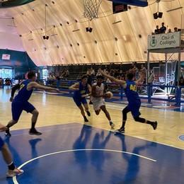 Basket, l'Assigeco cresce e piega 82-46 il Fiorenzuola