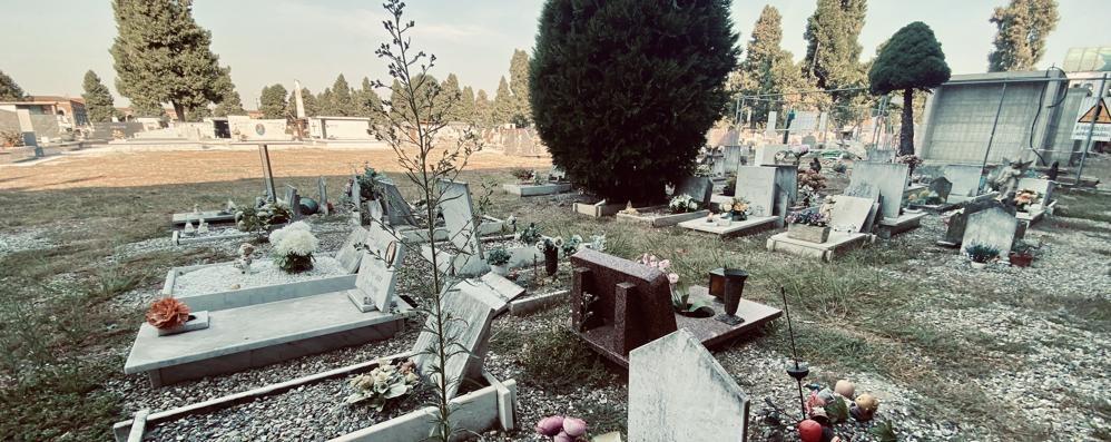 """LODI Stato di degrado al cimitero, una petizione """"tra le tombe"""""""