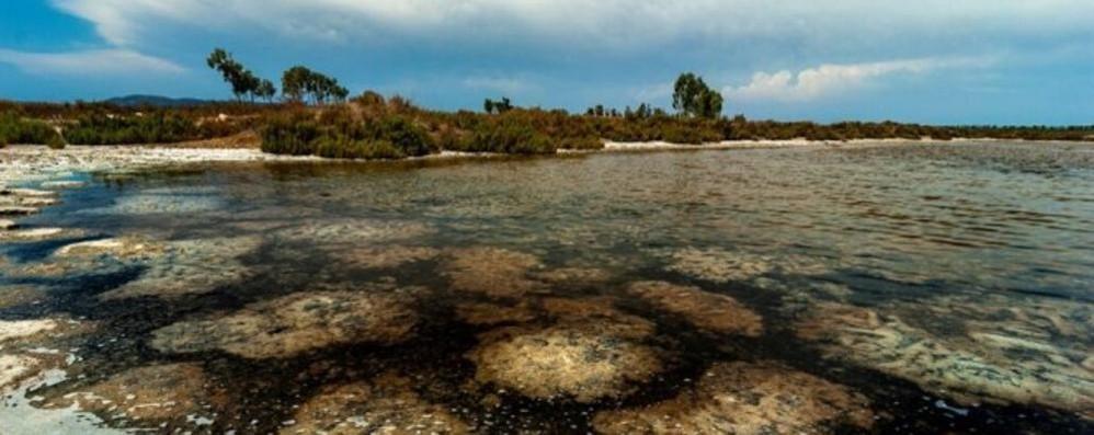 Ambiente e società nell'obiettivo: Melegnano ospita il Photofestival