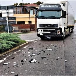 """San Colombano, cinghiali in strada:  conducente """"vola"""" fuori strada"""