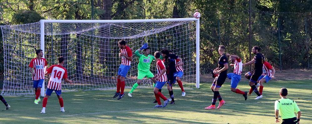 """Calcio, il Bano """"gufa"""" il Pavia"""