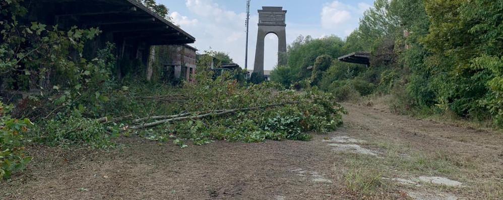 CERRO Partiti i lavori di pulizia all'ex impianto militare della Saronio