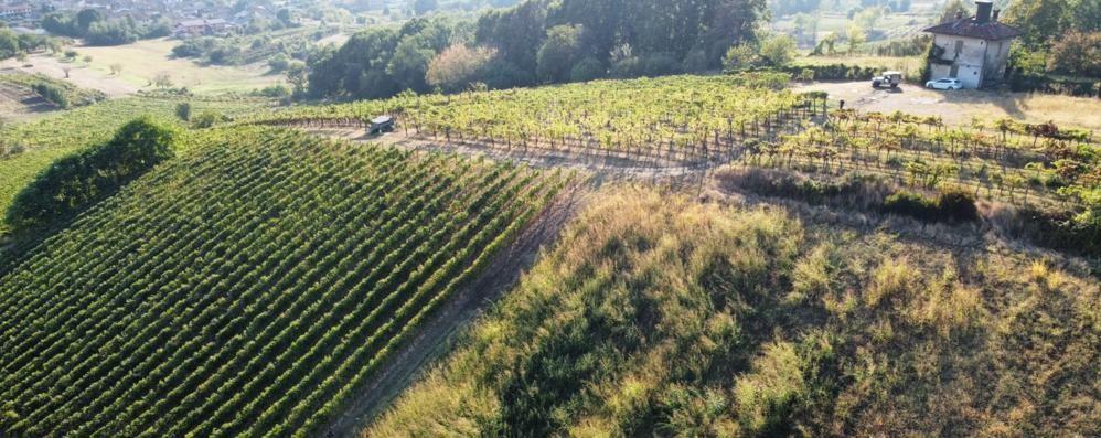 """San Colombano, """"perde"""" l'auto in collina:  ritrovata con l'aiuto di un drone"""