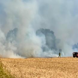 Doppio maxi incendio nella Bassa, campi in fiamme tra Zorlesco e Secugnago e a Casalpusterlengo VIDEO