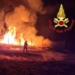 LODI Il rogo delle cataste della cattedrale vegetale, la Procura non esclude l'incendio doloso